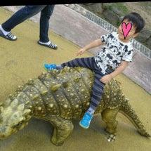 ソウル大公園・動物園