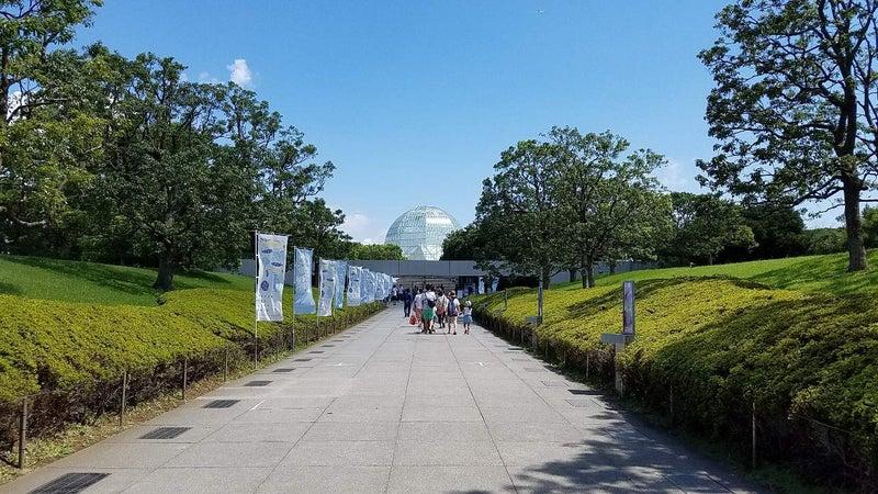 水族館入口4