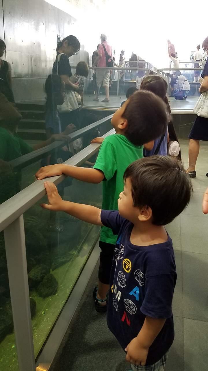 水族館30