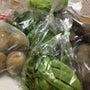 お野菜いっぱいいただ…