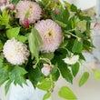 ダリアと秋明菊のブ…