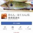 白らん・尾道市/Fa…