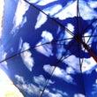 【2歳児の・ママ・傘…
