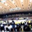 Bリーグ 横浜B-C…