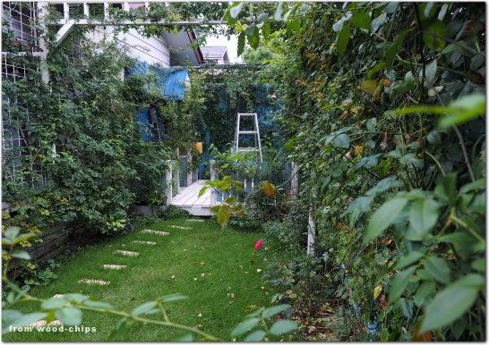 バラの庭 パーゴラ 芝生