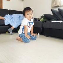1歳前の福隊長