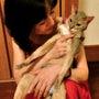 猫の神妙な顔
