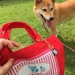 犬用お散歩バッグ〜世…