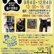 大阪公営住宅訴訟猫・…