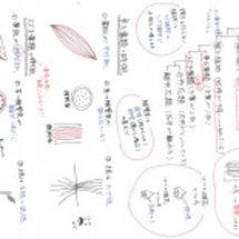 理科まとめノート