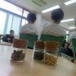 農に学ぶ 木村さん講…