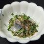 さんま刺身と貝割菜の…