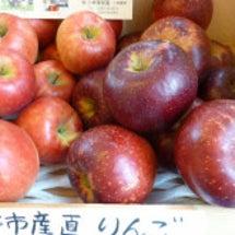 りんご入荷しました。