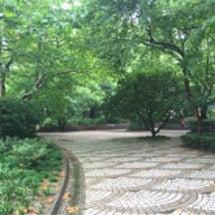 雨が降ったら公園行こ…