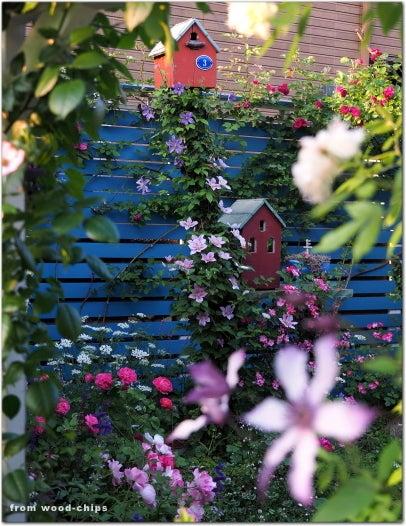 バラの庭 バードハウス