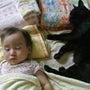 1歳4か月息子と黒猫…