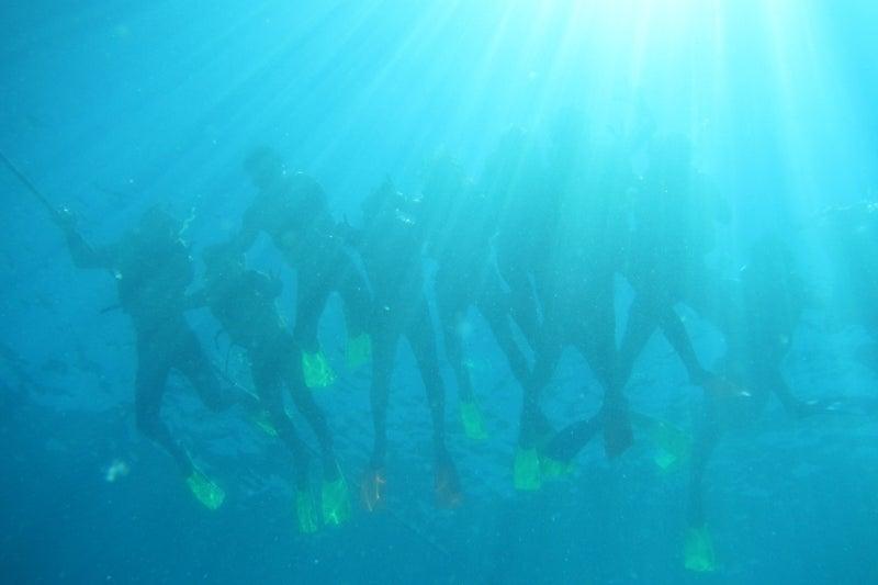 ReefWorld6