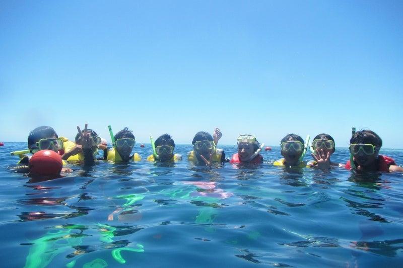ReefWorld3