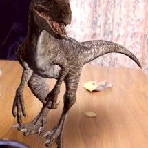 恐竜がでた