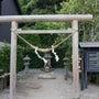 鹿児島仙巌園の猫神