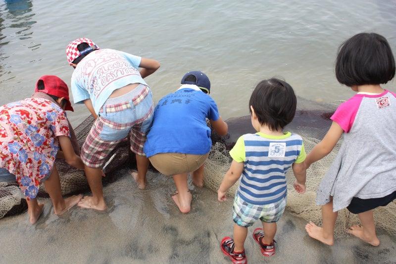 網に触れる子どもたち