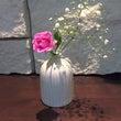 一輪。花のある暮らし