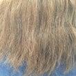 ビビリ毛をマシにしま…