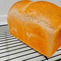 自家製酵母の食パンで…