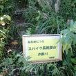 角田山と温泉、地ワイ…