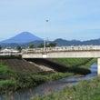 富士山と最近繁殖して…