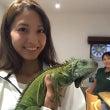 爬虫類カフェ行きまし…