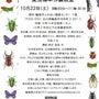 昆虫標本作製教室10…