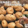 季節の商品《北海道産…