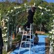 熊本復興祈念市民結婚…