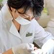 福岡・西新の歯医者 …