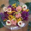 妖精の食べ物  お花…