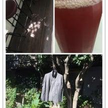 プルーンの酵素jui…