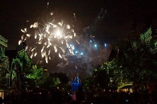 Disneyland Forever その13