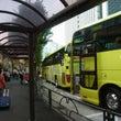 東京名物 はとバス観…