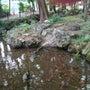 池の水が元通りの量に…
