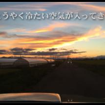 ジャイロピン(鳴沢湖…