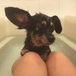一緒にお風呂♪