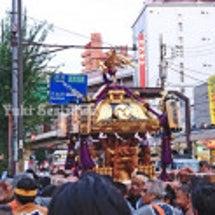 三茶の例大祭で神輿