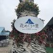 富士 花めぐりの里へ