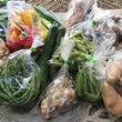 本日の野菜の宅配