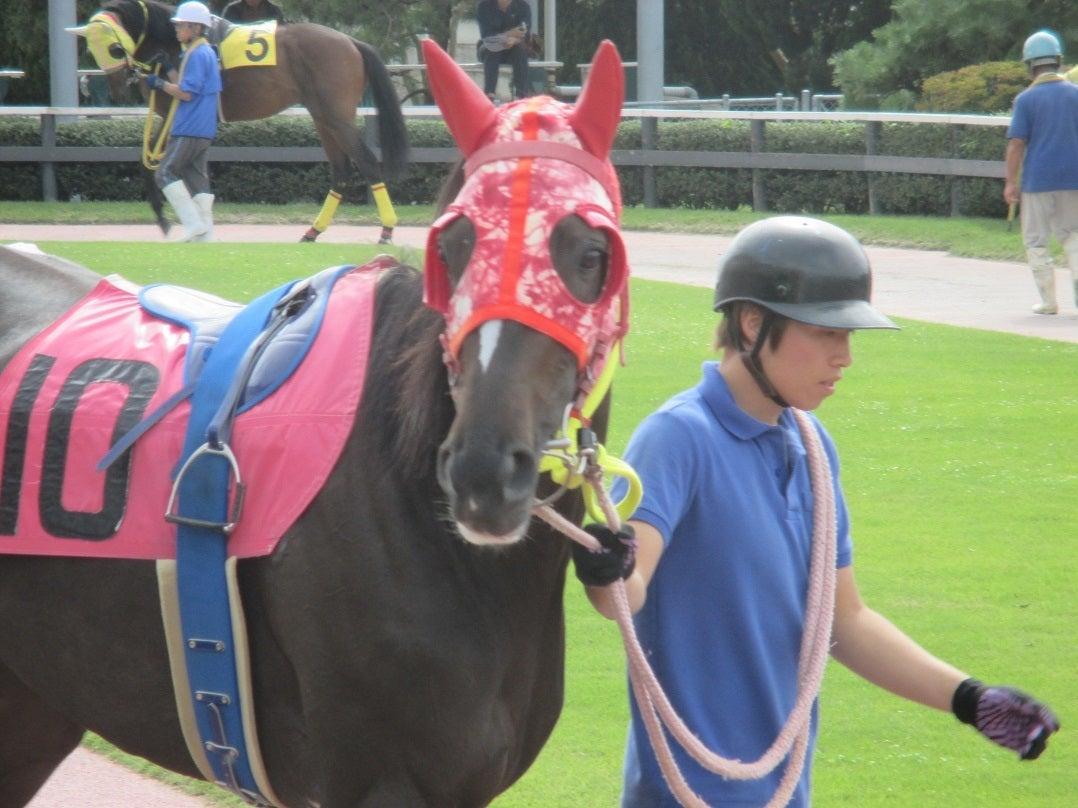 金沢競馬担当日記秋がはじまるよ