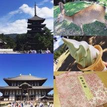 奈良公園と御朱印めぐ…