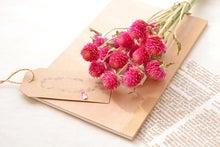千日紅のドライフラワー(花水季さん)