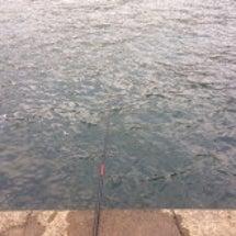 秋の海ふたたび