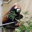 動物園Part2!